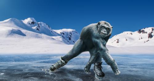 monkey on skates