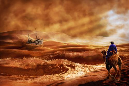 ship and dromedar