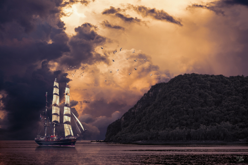 piratesbay