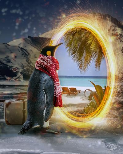 penguinportal